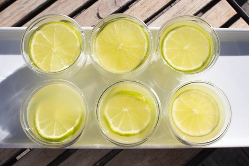 Virgin-lime-shot-497x331.jpg